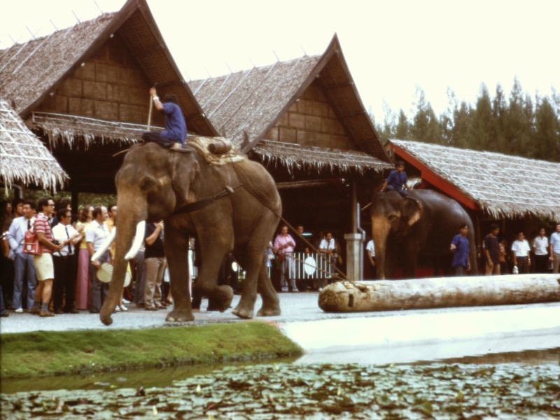 Thailand - Rose Garden, 1974